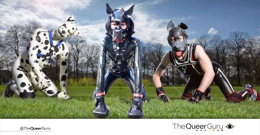 Human Pup   Maxxx, el perro humano.